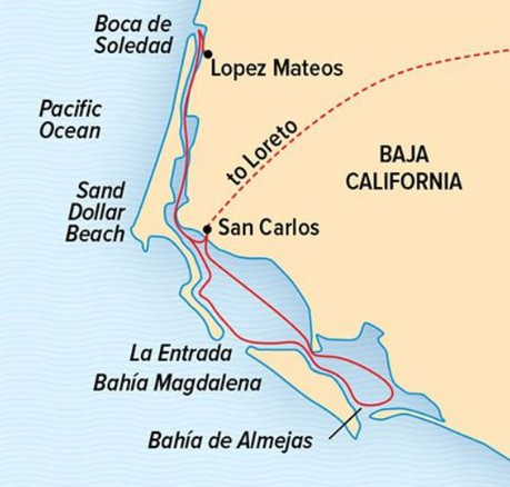 Map for Wild Baja Escape: The Whales of Magdalena Bay