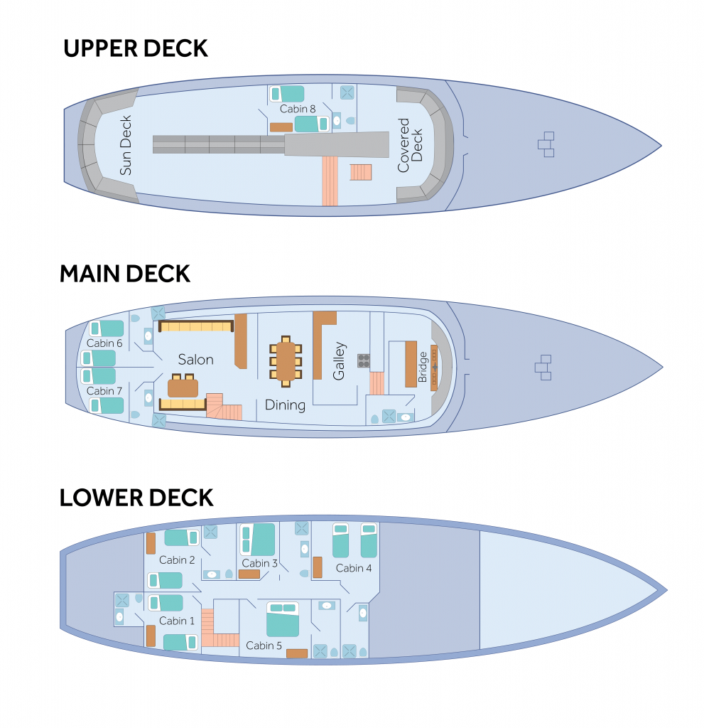 Cabin layout for Beluga