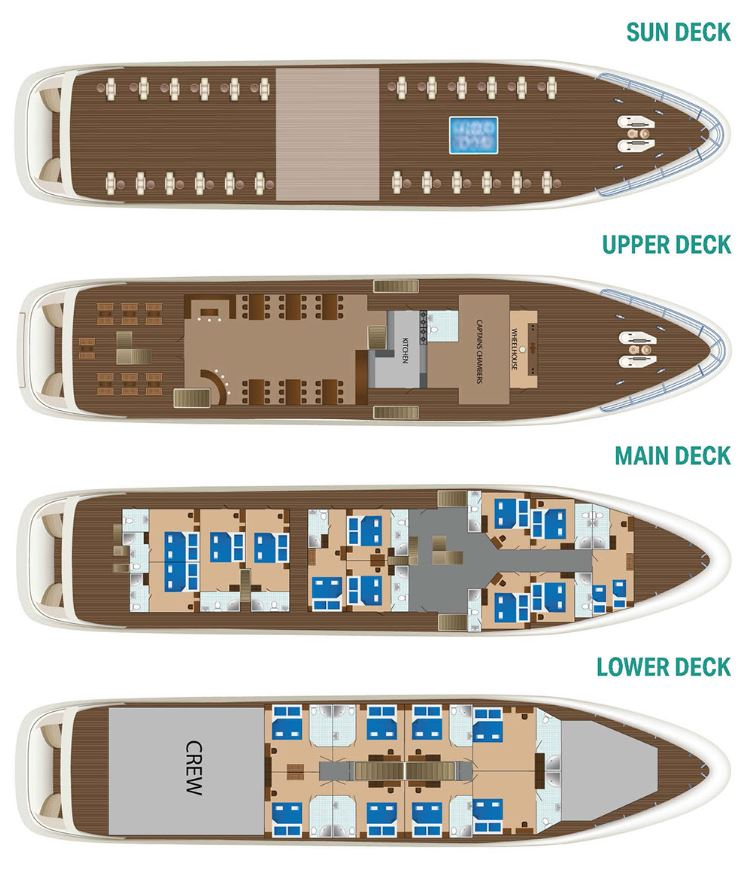 Cabin layout for Diamond